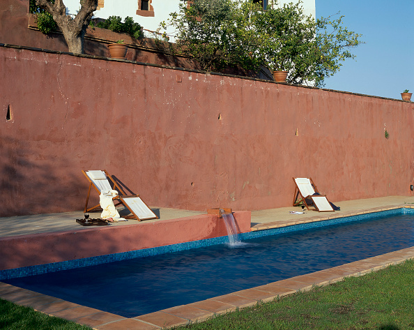 Grass Family「View of a swimming pool beside a wall」:写真・画像(5)[壁紙.com]
