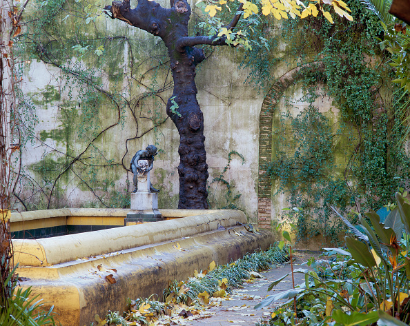 Casa De Pilatos「View of a statue in a garden with tree trunk and wall in background」:写真・画像(19)[壁紙.com]