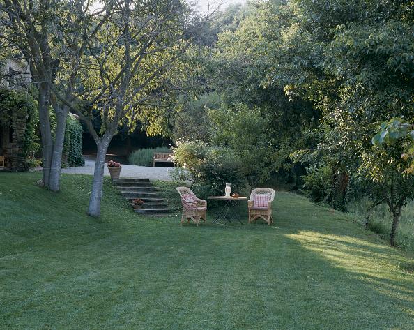 新鮮「View of a seating arrangement on a lawn」:写真・画像(18)[壁紙.com]