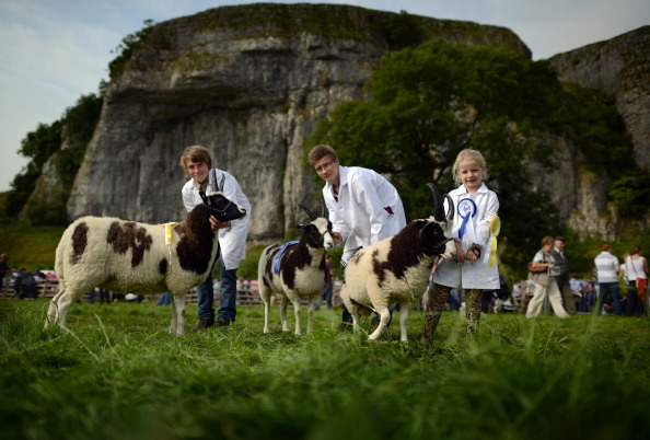 Variation「Yorkshire Dales Farming Community Gathers For The Kilnsey Show」:写真・画像(12)[壁紙.com]