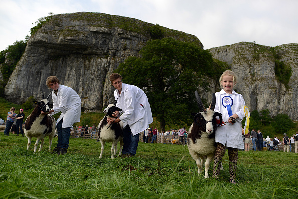 Variation「Yorkshire Dales Farming Community Gathers For The Kilnsey Show」:写真・画像(13)[壁紙.com]