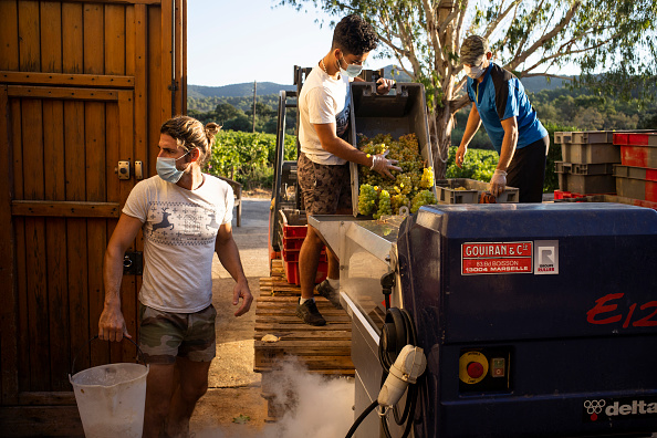 Pouring「France's Wine Harvest Early Amid Coronavirus And Climate Challenges」:写真・画像(17)[壁紙.com]