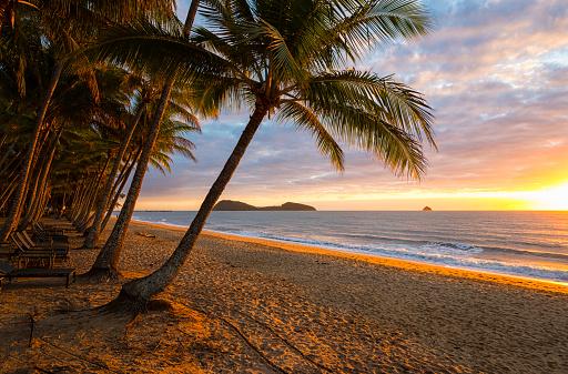 リゾート「オーストラリア、クイーンズランド州パーム コーブで夜明け」:スマホ壁紙(17)