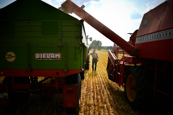 Finance and Economy「Wheat Harvest Begins Amidst Hot Summer」:写真・画像(11)[壁紙.com]