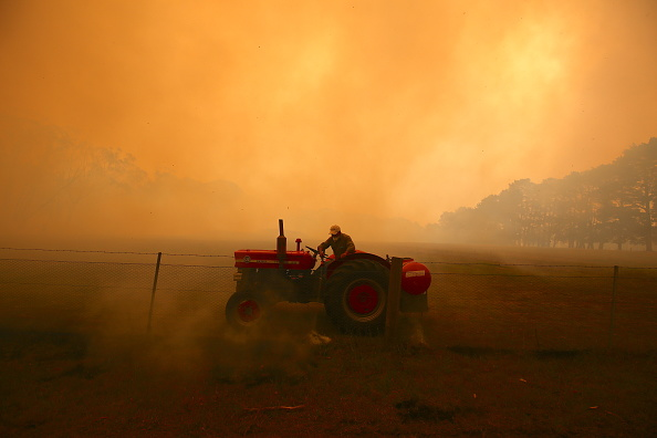 オーストラリア「Gospers Mountain Fire At Emergency Level As Heatwave Continues」:写真・画像(11)[壁紙.com]