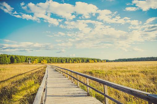 Steppe「Grassland Road」:スマホ壁紙(9)