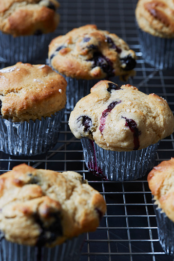Meal「Blueberry muffins in cupcake holders」:スマホ壁紙(5)