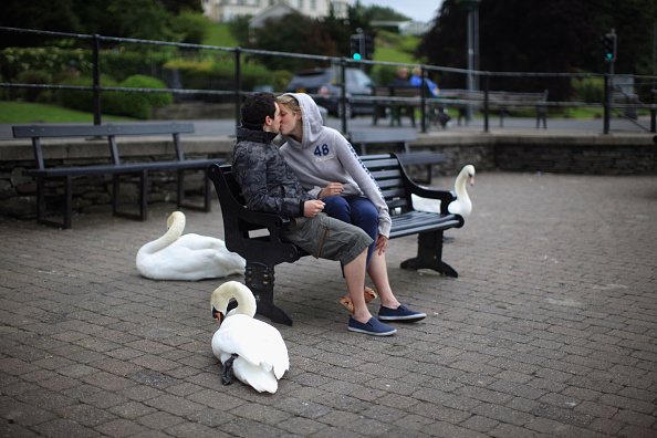Bench「Lake District In Bid To Become UNESCO World Heritage Site」:写真・画像(13)[壁紙.com]