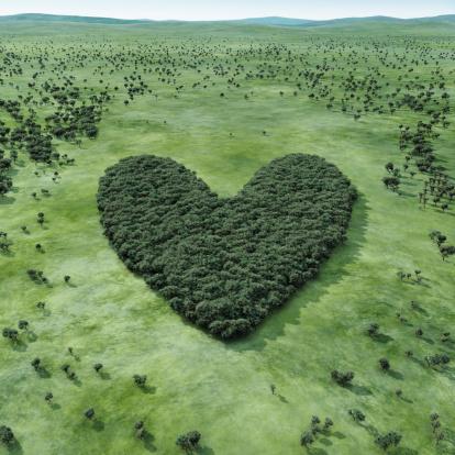 Heart「Forest shaped heart」:スマホ壁紙(7)
