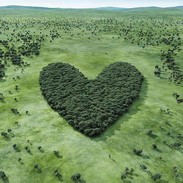 Forest shaped heart:スマホ壁紙(壁紙.com)