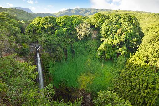 Haleakala National Park「USA, Hawaii, Maui, Haleakala National Park, Makahiku Falls」:スマホ壁紙(2)