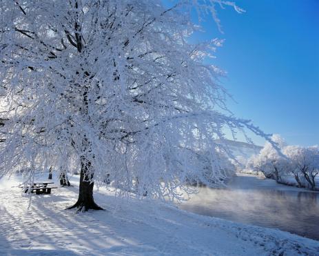 Part of a Series「River Tay in Winter, Aberfeldy, Perthshire, Scotland」:スマホ壁紙(18)