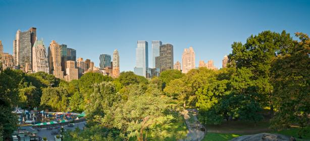 見渡す「ニューヨークのセントラルパーク」:スマホ壁紙(6)