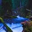ジェファーソン山荒野壁紙の画像(壁紙.com)