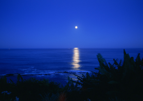 月の道のまとめ:2010年11月17日(壁紙.com)