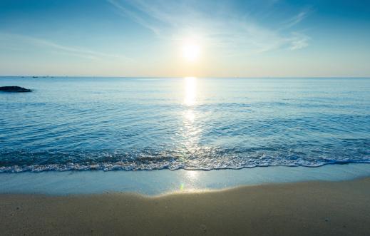 美しいシルエットにトロピカルなビーチの夕日:スマホ壁紙(壁紙.com)