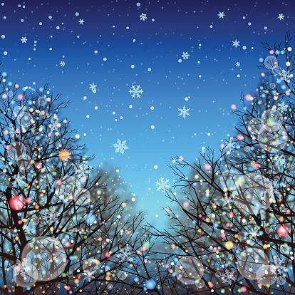冬の背景[照明と]Deciduous の木:スマホ壁紙(壁紙.com)