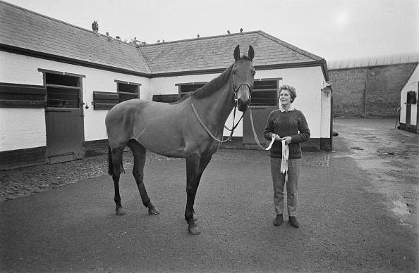 Racehorse「Arkle」:写真・画像(11)[壁紙.com]