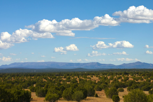 Mountain View - Arkansas「Southwestern Landscape with Sandia Mountains」:スマホ壁紙(15)