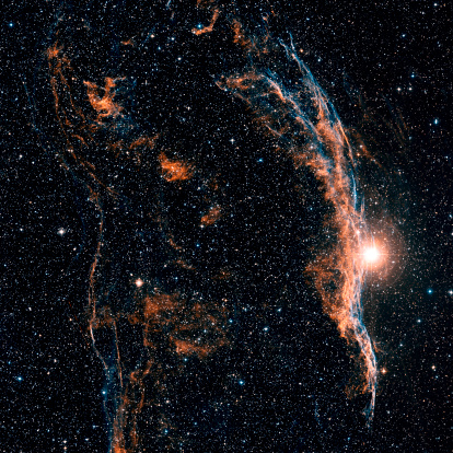Supernova「Witches Broom Nebula and Veil Nebula」:スマホ壁紙(12)