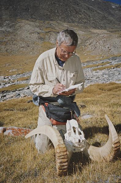 Horned「Conservationist In Wakhan」:写真・画像(10)[壁紙.com]