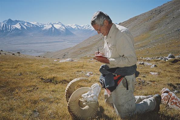 Horned「Conservationist In Wakhan」:写真・画像(11)[壁紙.com]