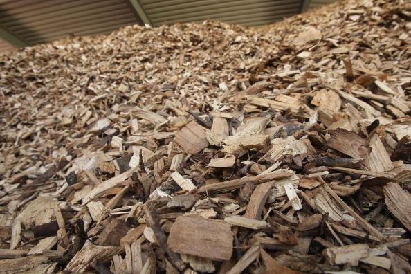 Ecosystem「Interest In Bioenergy On the Rise」:写真・画像(1)[壁紙.com]