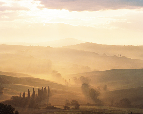 Val d'Orcia「Typical Italian landscape with mist and trees」:スマホ壁紙(19)