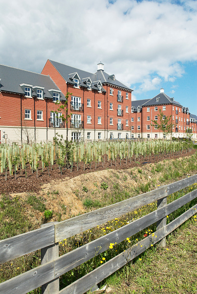 Surrounding「Landscaping surrounding a housing development, Colchester, Essex, UK」:写真・画像(17)[壁紙.com]
