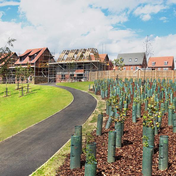 Surrounding「Landscaping surrounding housing development under construction, Norwich, Norfolk, UK」:写真・画像(16)[壁紙.com]