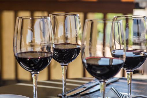 Tasting「Wine tasting at bodega in Mendoza, Argentina」:スマホ壁紙(7)