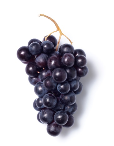 Fruit「Black grapes」:スマホ壁紙(14)