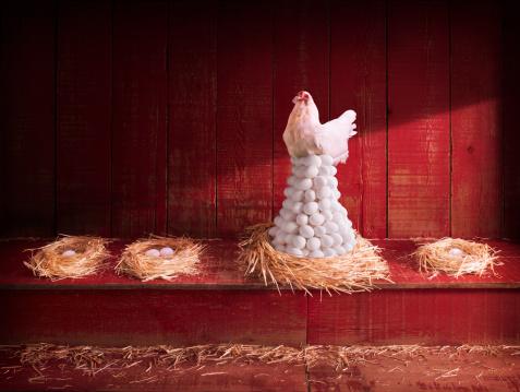 Making Money「Chicken and eggs」:スマホ壁紙(8)