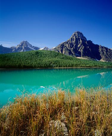 ケフレン山「Waterfowl Lake and Mt Chephren in Banff」:スマホ壁紙(15)
