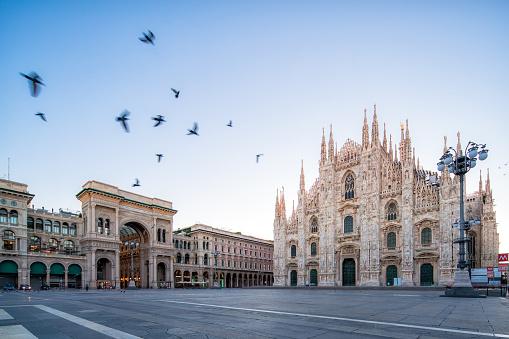 Cathedral「the Piazza del Duomo at dawn」:スマホ壁紙(0)