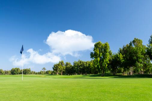 Agricultural Field「Golf Course」:スマホ壁紙(5)