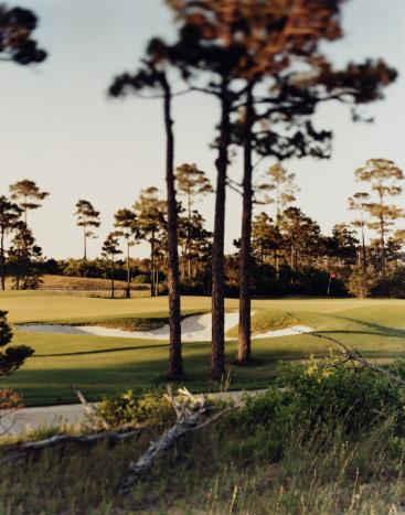 Sand Trap「Golf course with sand trap, Gulf Shores, Alabama, USA」:スマホ壁紙(10)