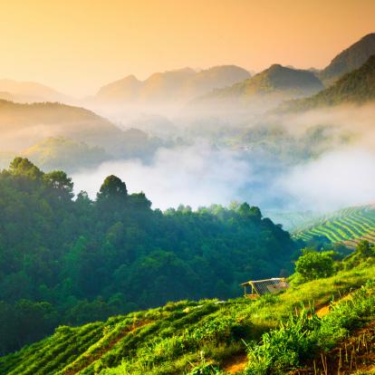 Thailand「Beautiful sunshine at misty morning mountains .」:スマホ壁紙(17)
