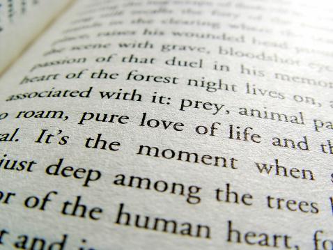 Typescript「Book Page Love」:スマホ壁紙(14)