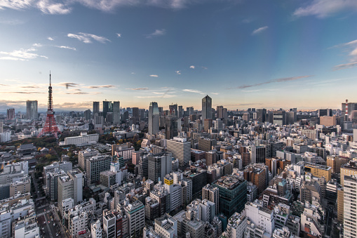 Tokyo Tower「Busy Streets in Tokyo and the view of Tokyo skytree / Tokyo, Japan」:スマホ壁紙(5)