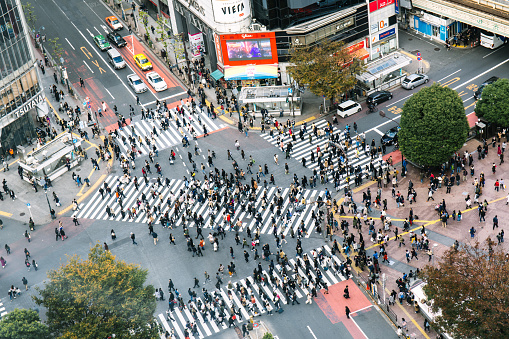 Wide Shot「Busy Streets in Tokyo and the view of Shibuya Crossing/ Tokyo, Japan」:スマホ壁紙(17)