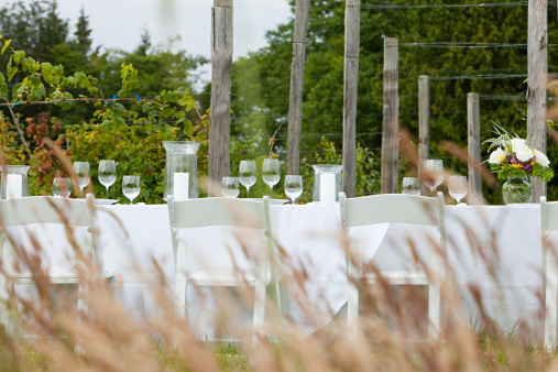 Place Setting「Dinner table in a rural field」:スマホ壁紙(0)