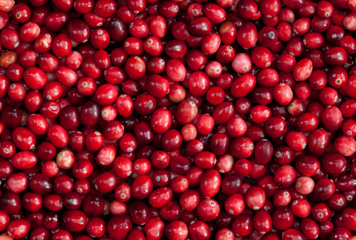 Cranberry「TILEABLE Seamless Red Cranberry Fruit Background」:スマホ壁紙(5)