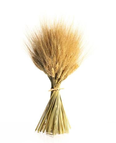 Bundle「Wheat on white」:スマホ壁紙(17)