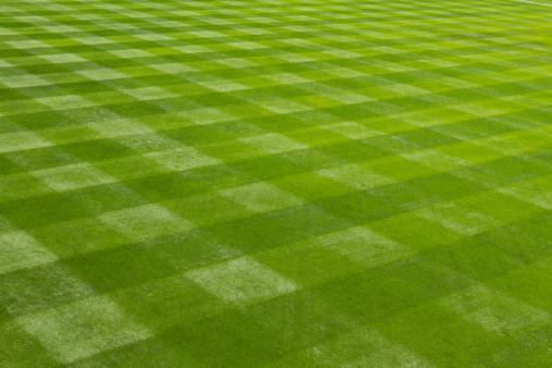 Stadium「Perfectly mown grass at the ball field.」:スマホ壁紙(12)