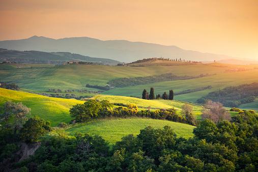 Tranquility「Rolling Tuscany Landscape」:スマホ壁紙(7)