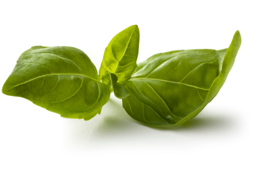 Tasting「Fresh Herbs: Basil Isolated on White Background」:スマホ壁紙(0)