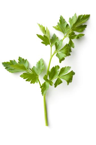 Tasting「Fresh Herbs: Celery」:スマホ壁紙(3)