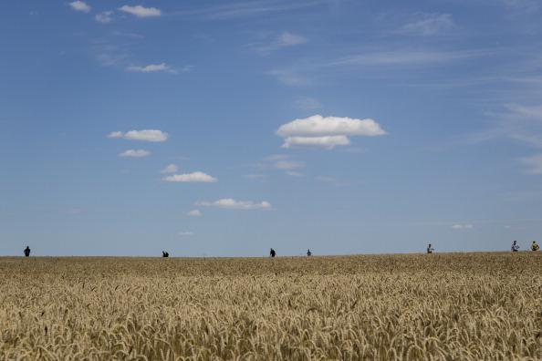 田畑「298 Crew And Passengers Perish On Flight MH17 After Suspected Missile Attack In Ukraine」:写真・画像(12)[壁紙.com]