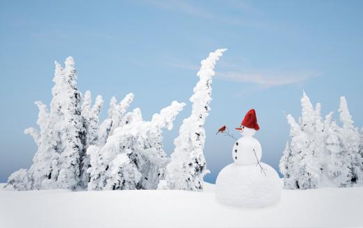 snowman「Snowman and cardinal in a winter forest」:スマホ壁紙(15)